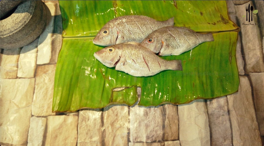 Fish Nirvana